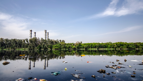 Supporting Liability Arguments with Environmental Forensics